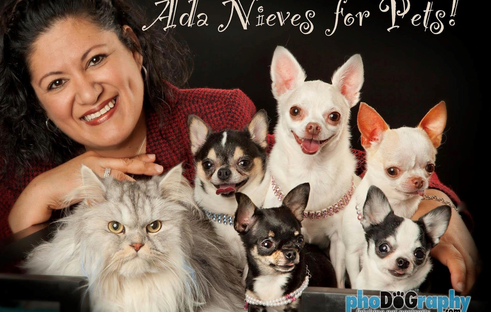 Meet the Designer – Ada Nieves